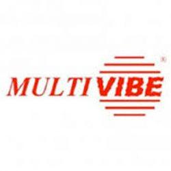 logo-MultVibe